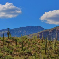 Hospice University Conference Tucson